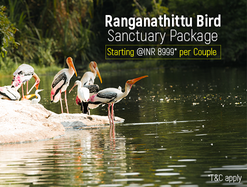 Ranganathittu Bird Sanctuary Package